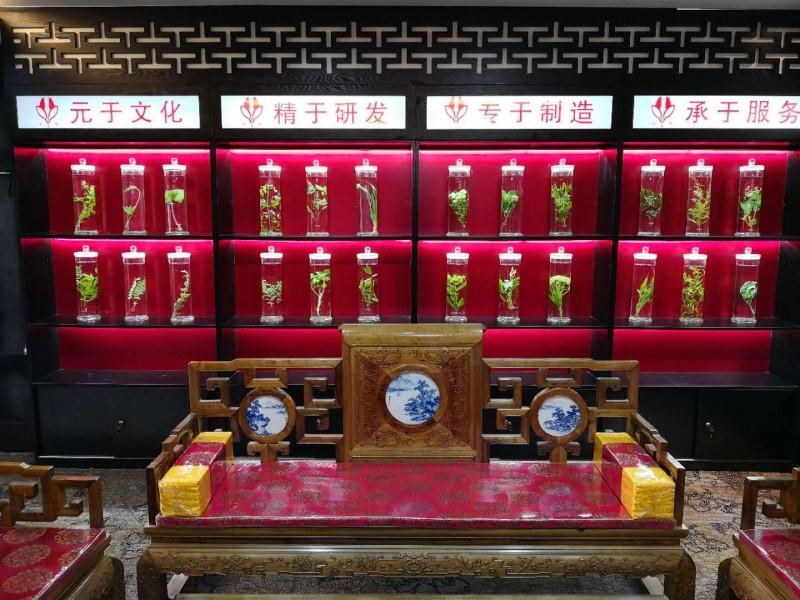 成都润馨堂药业-国家级非物质文化遗产传承中心7