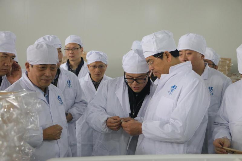 时任成都市副市长刘宏葆到企业调研图片